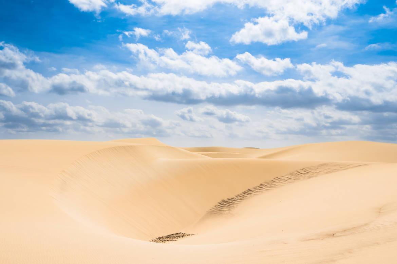 desierto-de-Viana-galeria.jpeg